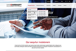 Data Intensity Website